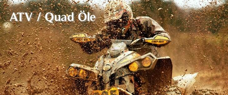 Quad Motor�l